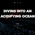 Diving into an acidifying ocean